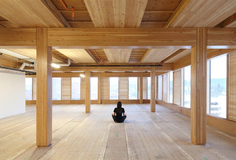 el futuro de la madera en el interiorismo