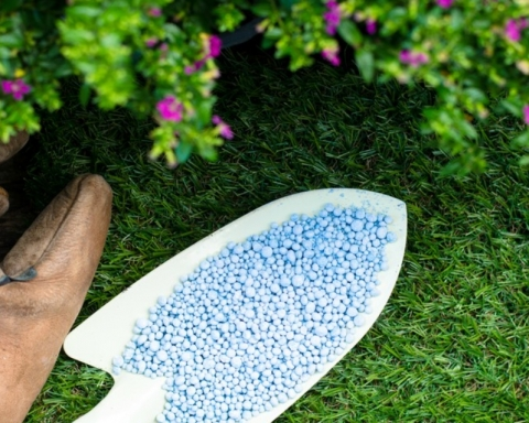 Como mejorar el suelo para tus plantas 20