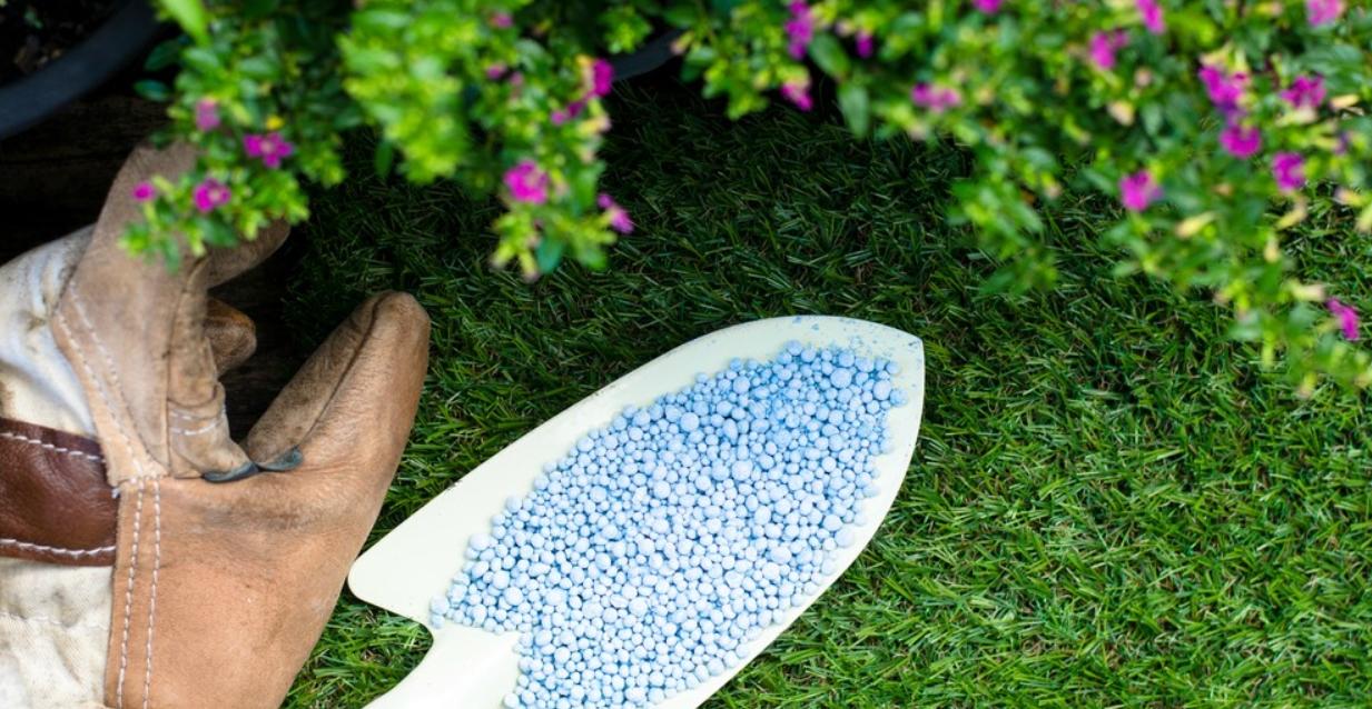 Como mejorar el suelo para tus plantas 2