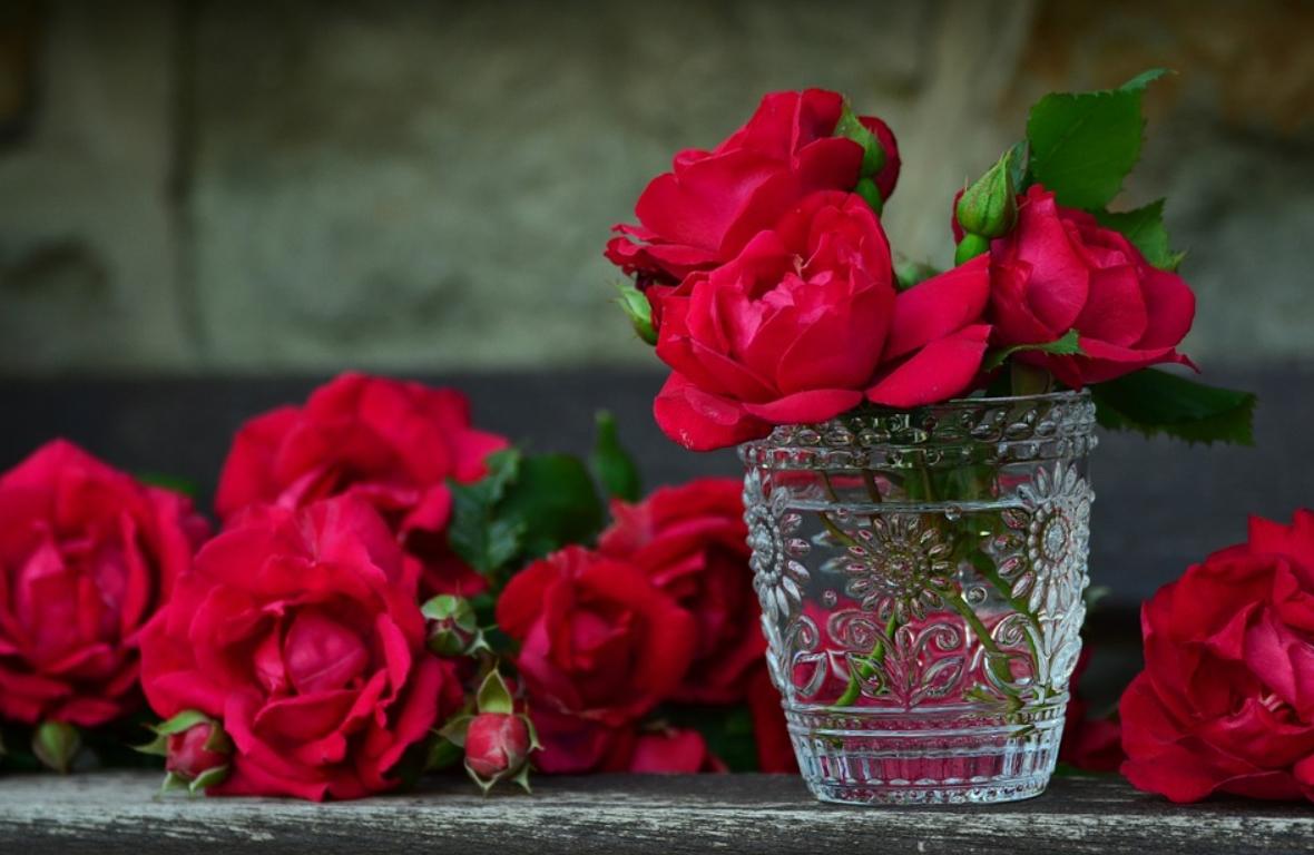 Las rosas rojas, ¿por qué simbolizan el amor? 4