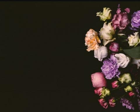 tipos de flores para difuntos y funerales 13