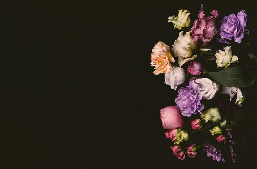 flores del futuro que se pueden regalar ya 3